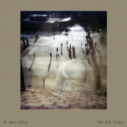 BD Harrington - The kid strays